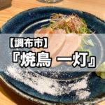【調布市】『焼鳥 一灯』オシャレで美味しい絶品鳥料理を味わう!