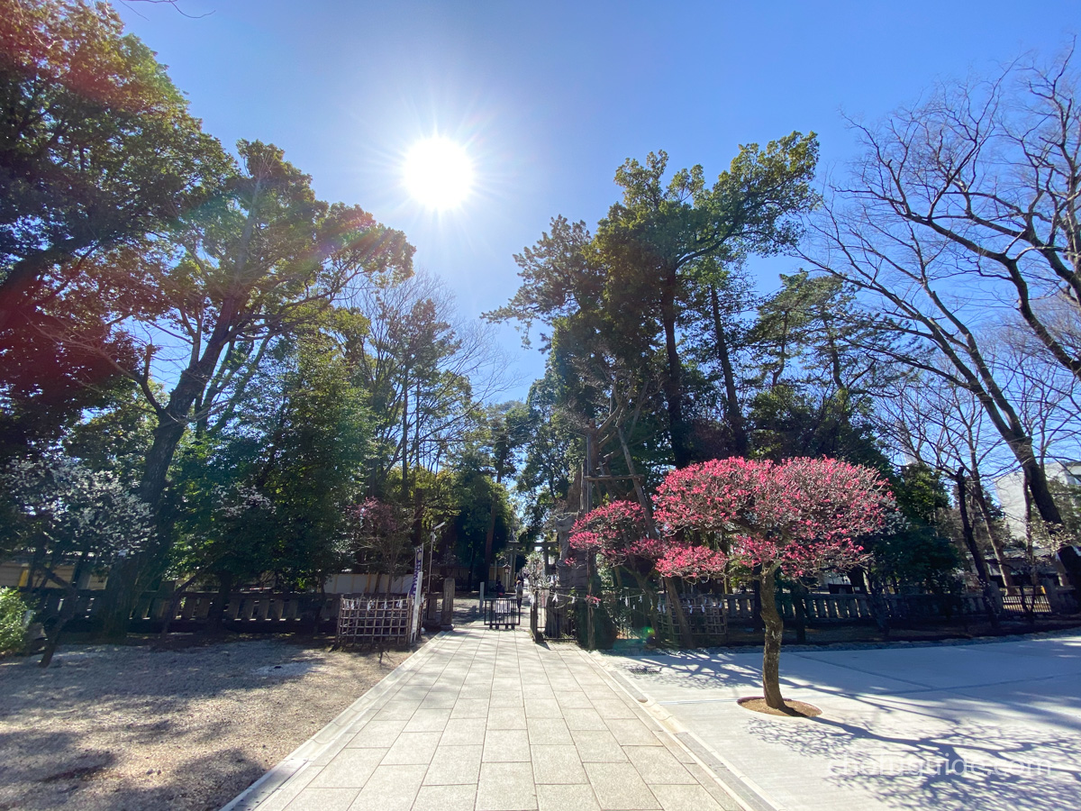 【調布市】戌の日『布多天神社』の安産祈願へと行って来ましたまとめ